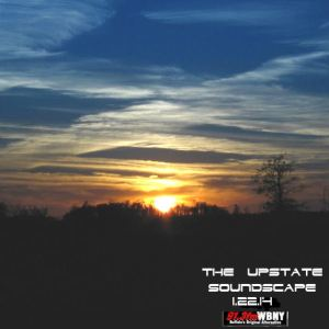 The Upstate Soundscape, 1.15.14