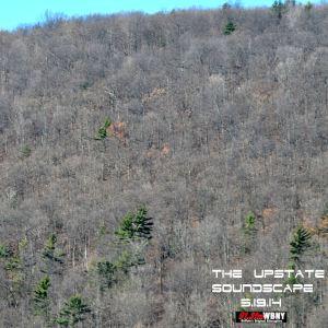 The Upstate Soundscape, 3.19.14