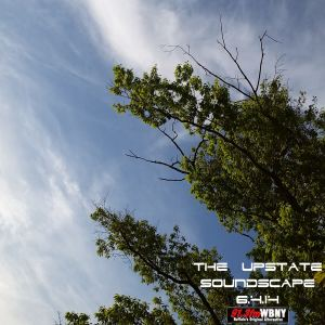The Upstate Soundscape, 6.4.14