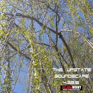 The Upstate Soundscape, 4.29.15