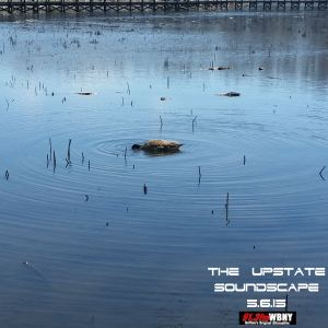 The Upstate Soundscape, 5.6.15