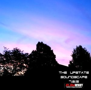 The Upstate Soundscape, 7.8.15