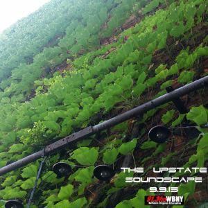 The Upstate Soundscape, 9.9.15