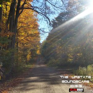 The Upstate Soundscape, 10.15.15