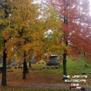 The Upstate Soundscape, 11.18.15