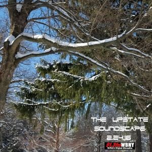 The Upstate Soundscape 2.24.16