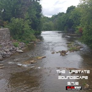 the-upstate-soundscape-9-7-16